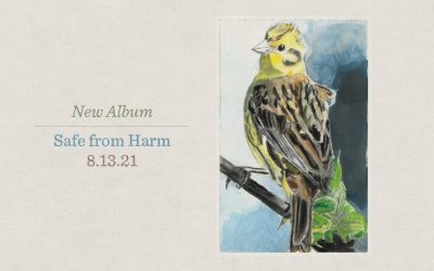 A Captivating Gift | Yellowhammer Hymns